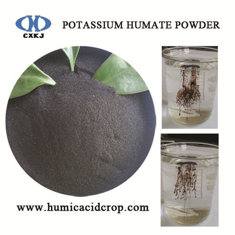 Potassium+humate+powder+K-humate+organic+fertilizer