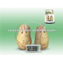 Green Science DIY Potato Battery Clock Set