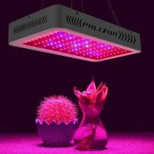 Microplaquetas dobro de Phlizon conduzidas crescem a luz 600w