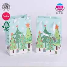Custom printing green garment carrier shopping bag