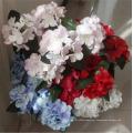 Hydrangea Flowers Decorate The Living Room