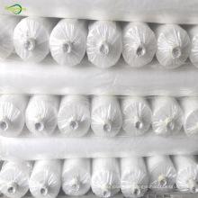 película de invernadero de plástico transparente