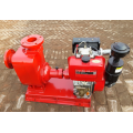 CYZ explosion-proof petrol salt water pumps