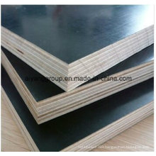 First Class Brown Shuttering Film Faced Plywood for Construction