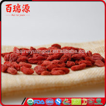 Pianta di goji berry goji health benefits of goji berries