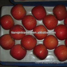 Hochwertiger Apfellieferant