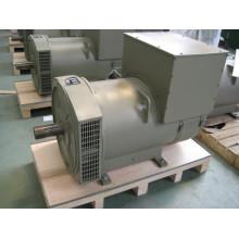Трехфазный бесщеточный генератор мощностью 260 кВт (JDG314ES)