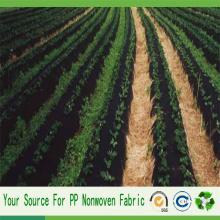 Tissu de paysage non tissé de Spunbond pp d'agriculture de la Chine