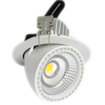 20W Ra80/Ra90 CREE COB LED Trunk Light