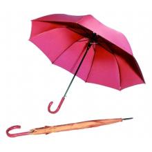 Auto Open Pure Color Straight Umbrella (BD-19)