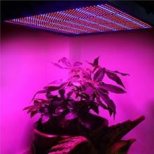Светодиодный светильник мощностью 120 Вт вырастает из светлых растений Hydroponics AC85 ~ 265V