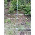 Alta Qualidade Galvanizado Campo Fence-Hts001A