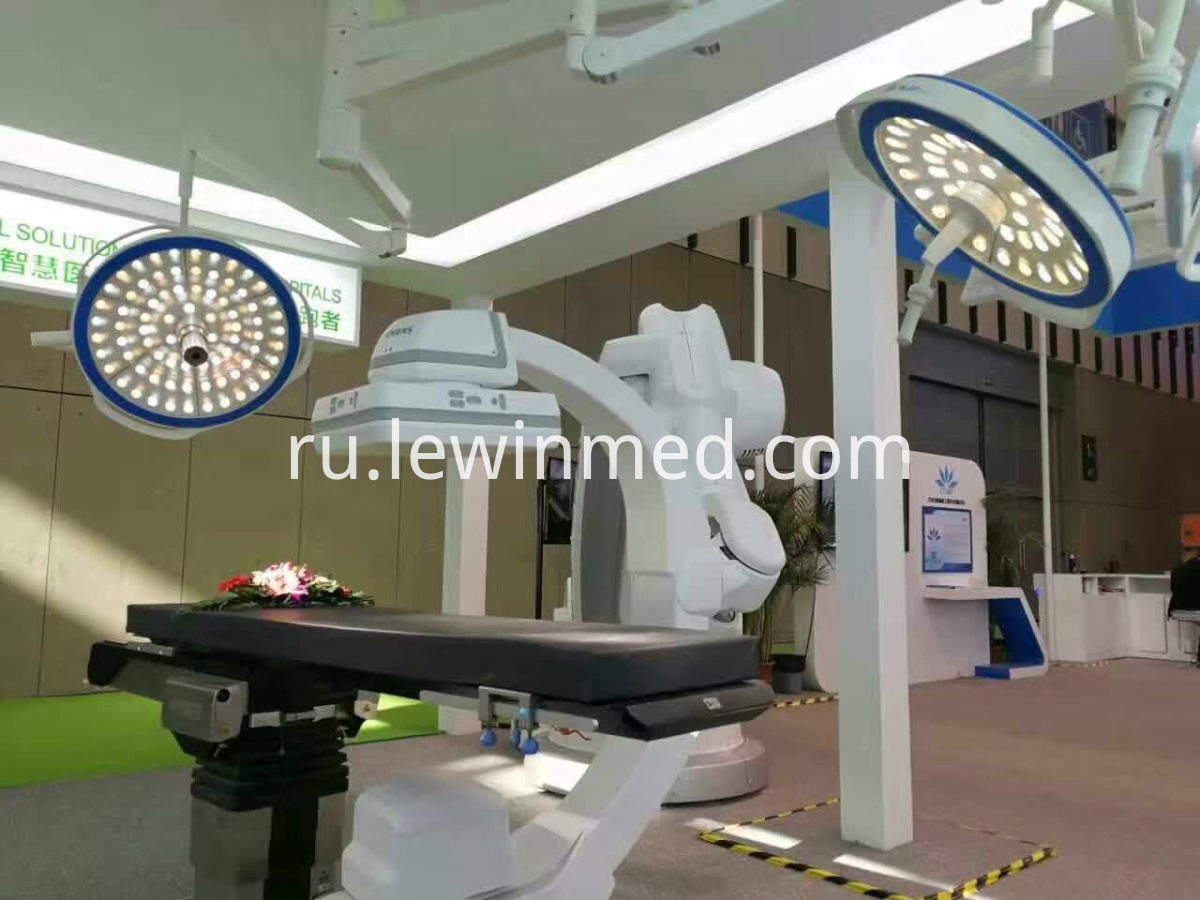 Dual lamp head surgical light