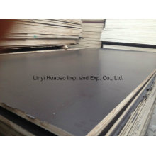 Birch Core Film Faced Plywood (HBB01)
