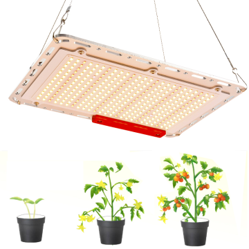 Mejor Grow Light 240W Samsung LM301H Quantum