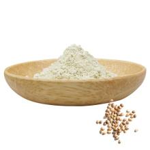 Plant-based Hemp kernel protein hemp seed protein powder