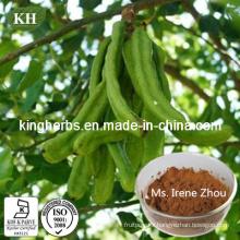 Carob Tree Fruit Pods Extract 10: 1; 20: 1