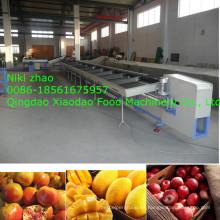 Manzana, mango, naranja, clasificadora / clasificadora