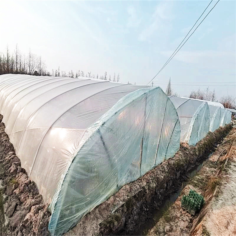 Biodegradable greenhouse plastic film (5)