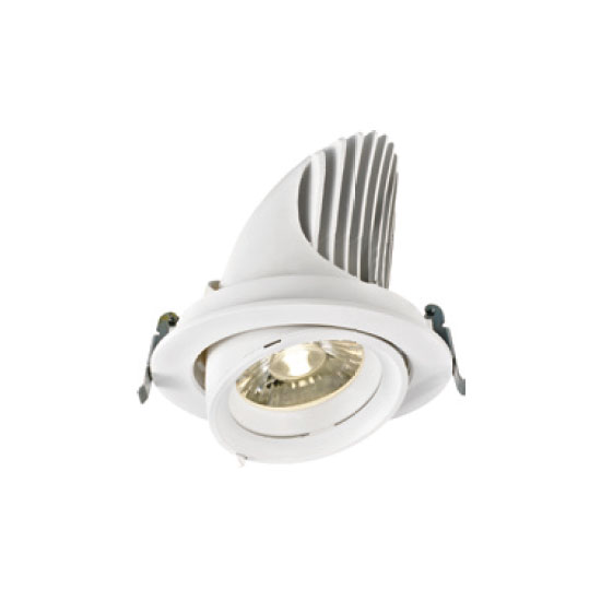 Exquisite White 38W LED Downlight