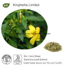 Damiana Leaf Extract 4: 1, 10: 1 Turnera Diffusa Extract
