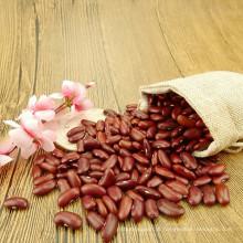 HQ China seco e cru escuro vermelho rim feijão de açúcar preço 220-240