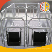 Solid Bar Gestation Stall