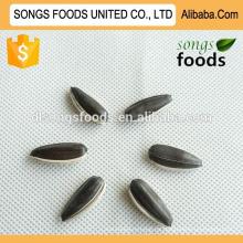 Nueces girasol semillas nueva cosecha