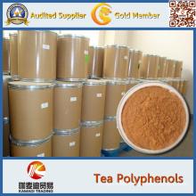 Green Tea Extract Tea Polyphenol