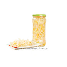 High Quality Canned Bean Sprout From China