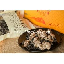 High Quality Dried Tea Flower Mushroom Healthy Vegetable