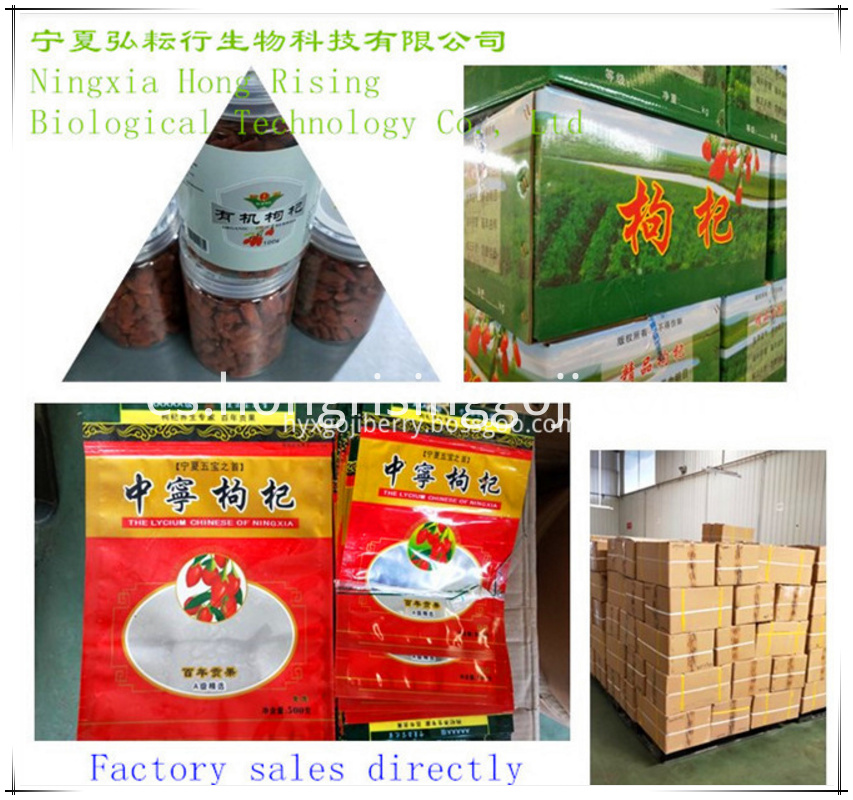 Goji Berry Packing_1