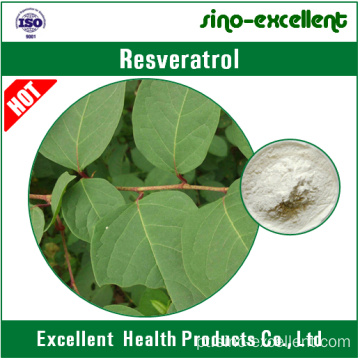 Resveratrol 98% (extracto gigante de Knotweed)