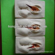 2013 modèle de formation HOT SALE de suturer le vagin