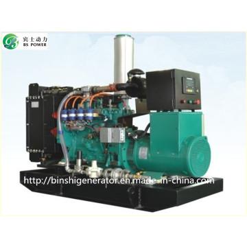 100kVA CNG Power Generator Sets
