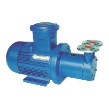CWB magnetische Rotary Wasserpumpe