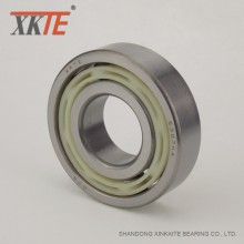 Nylon Conveyor Belt Roller Accessories Bearing
