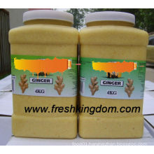 GINGER AND GINGER MIXED PASTE