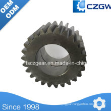 Transmission Gear Planetary Gear for Construction Machinery