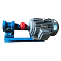 Hot Sale Stainless Steel Lubricating Oil Fuel Gear Pump
