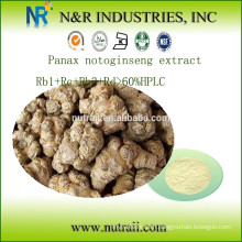 Notoginseng Extract Rb1+Rc+Rb3+Rd>60%HPLC
