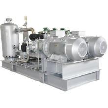 Ammonia Screw Compressor Parallel Unit