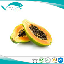 Papaya zaad poeder Fruit SAP poeder