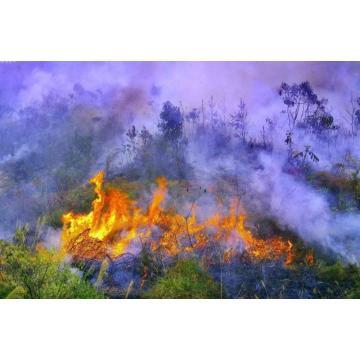Environmentally Friendly Fire Retardants