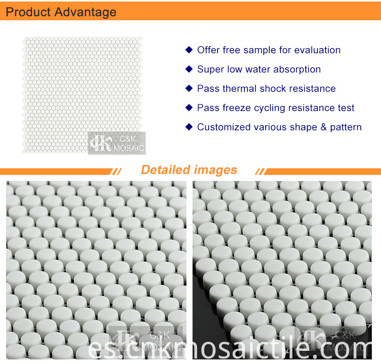 Mini Round Mosaic White Color Tile (2)