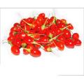 Organic Goji Berries (350grains/50g)