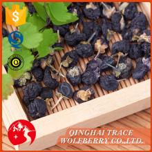 China el mejor precio de la fabricación profesional de la baya negra del goji