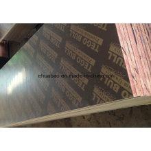Pegamento fenólico de la base de la madera contrachapada superior revestida de la película de Tego