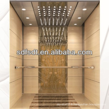Ascenseur de passagers / ascenseur de passagers Diverses capacités, vitesse et design