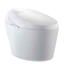 K-706 Water-saving intelligent disclosed auto toilet composting toilet